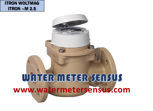 Flow meter Itron Woltmag M-itron 2.5″