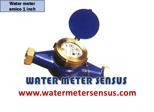 AMICO Archives - Water Meter Sensus