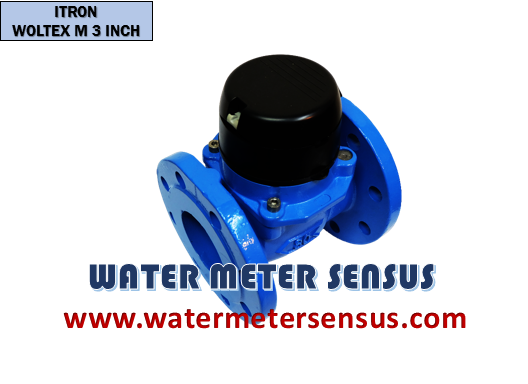 WATER METER ITRON Woltex 3 INCH (80 mm)