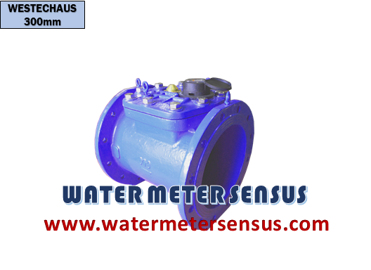 water-meter-westechaus-12-inch-300-mm