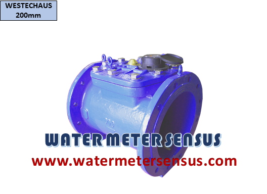 WATER METER WESTECHAUS 10 INCH (250 MM)